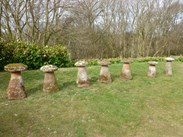 Showing all 7 of the staddlestones that came from one garden in Arley