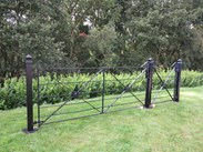 Wrought Iron Estate Gate and Pedestrian Gate with Posts