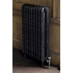 Highlight Polish Orleans Cast Iron Radiator
