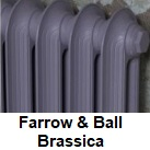 Carron Radiators Painted In Farrow and Ball Brassica